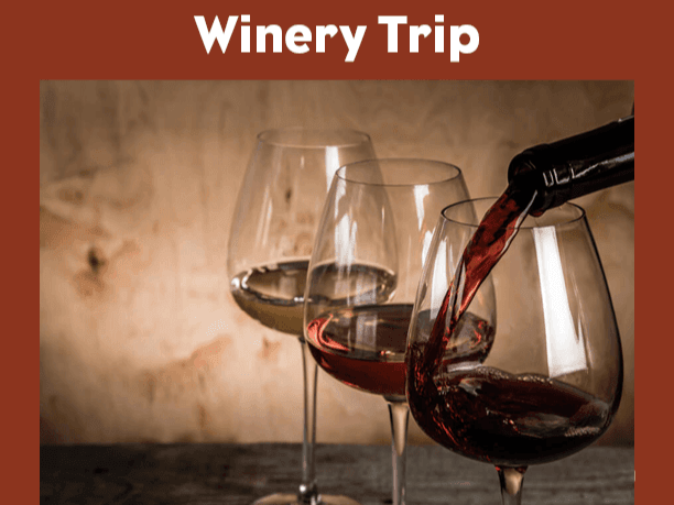 Website Winery Trip