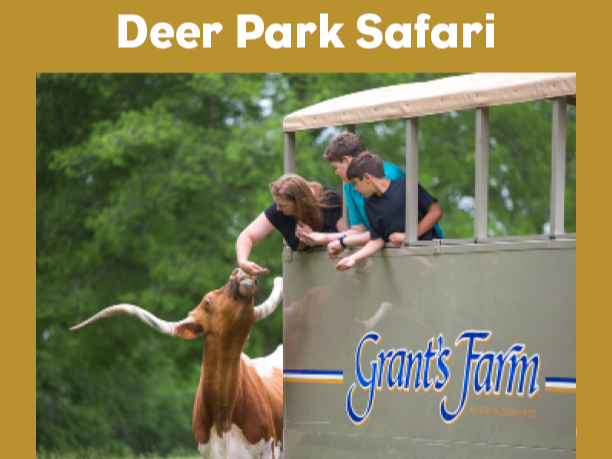 Website Deer Park Safari