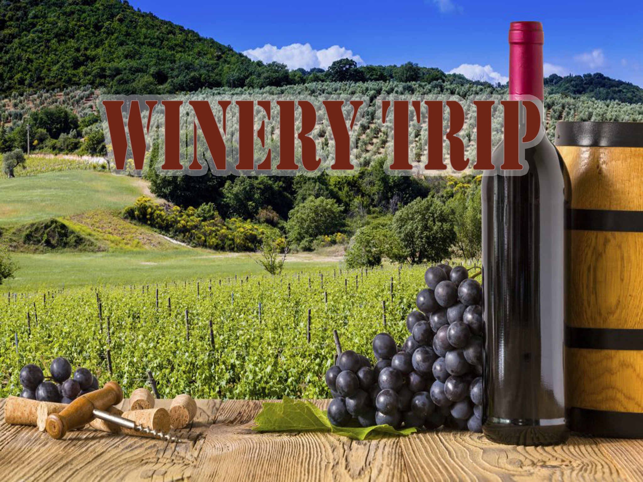 WineryTripGraphic